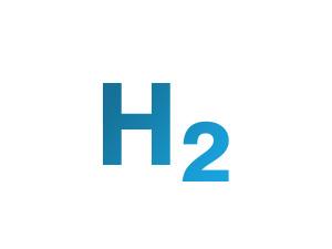 Hydrogen Gas Detectors